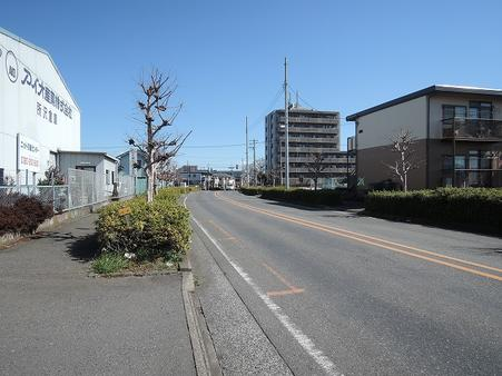 前面道路(和田遺跡通り)