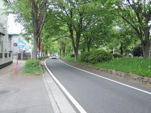 前面道路 国道245号(川越街道)