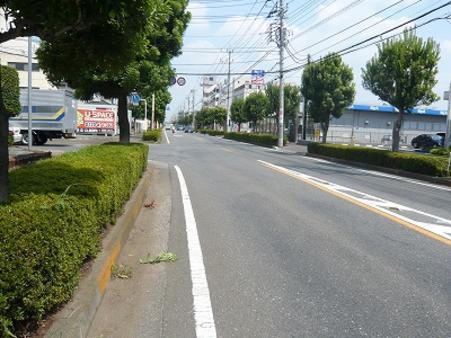 前面道路(東所沢中央通り)